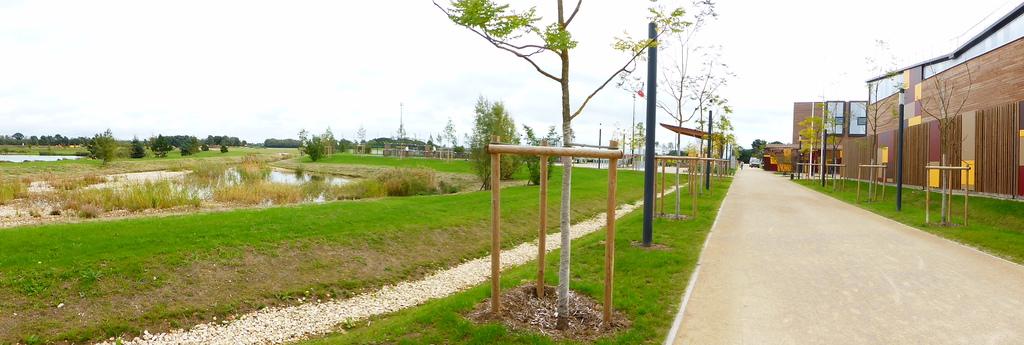 Atelier Alice Tricon / Jardins / Paysages - parc des sports<br>San Sénart - Saint Pierre du Perray (91) - Parc des Sports Saint Pierre du Perray allée principale Alice Tricon