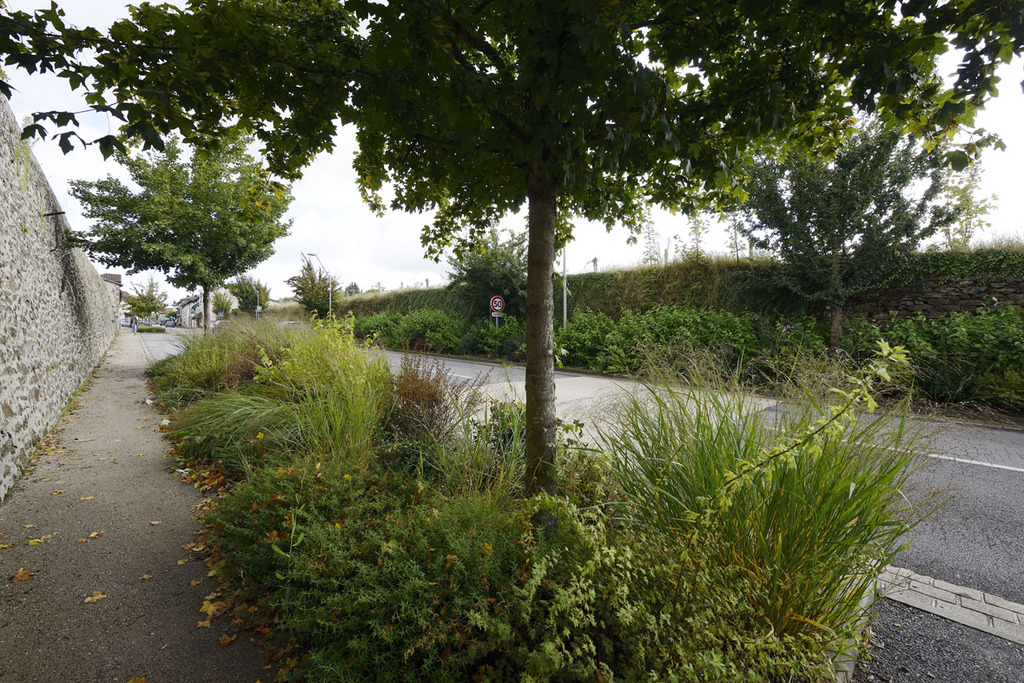 Atelier Alice Tricon / Jardins / Paysages - Séreilhac - Séreilhac (87) - chemin piéton étroit pour sortie de stationnement poid lourd