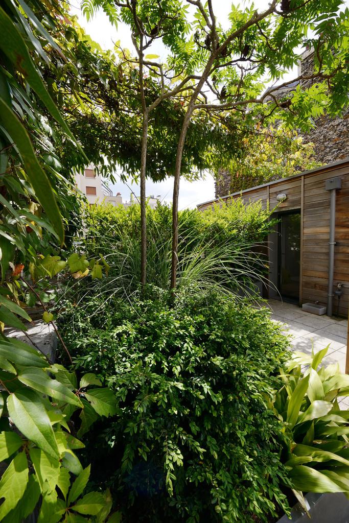 Atelier Alice Tricon / Jardins / Paysages - Passage Soupirs<br>Jardin privé - Paris (75020) - la terrasse du second étage