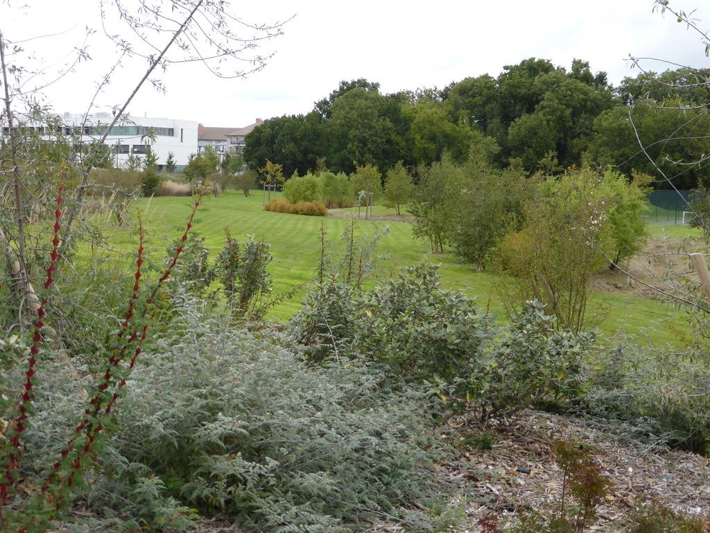 Atelier Alice Tricon / Jardins / Paysages - parc des sports<br>San Sénart - Saint Pierre du Perray (91) - Parc des Sports Saint Pierre du Perray biodiversité Alice Tricon