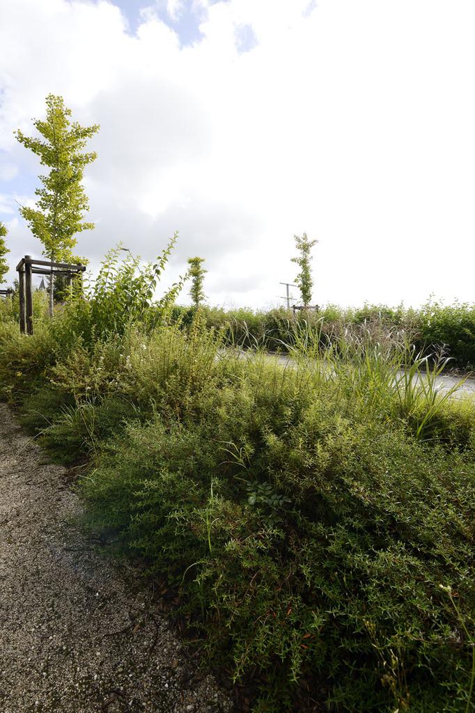 Atelier Alice Tricon / Jardins / Paysages - Séreilhac - Séreilhac (87) - partie basse du bourg