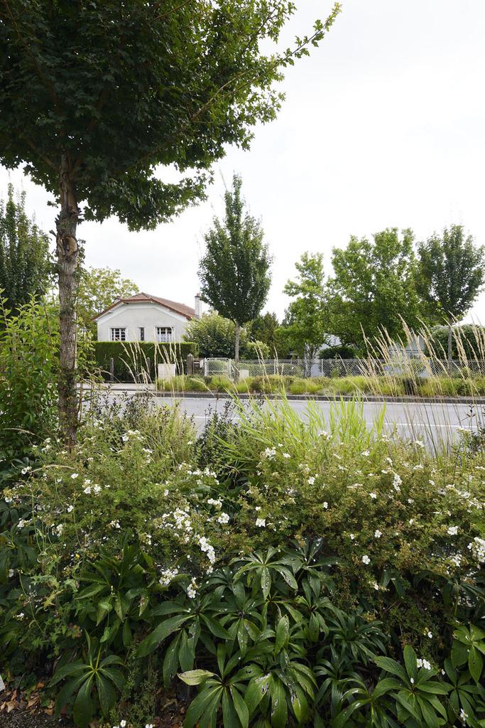 Atelier Alice Tricon / Jardins / Paysages - Séreilhac - Séreilhac (87) - partie haute du bourg :  d'un bord à l'autre