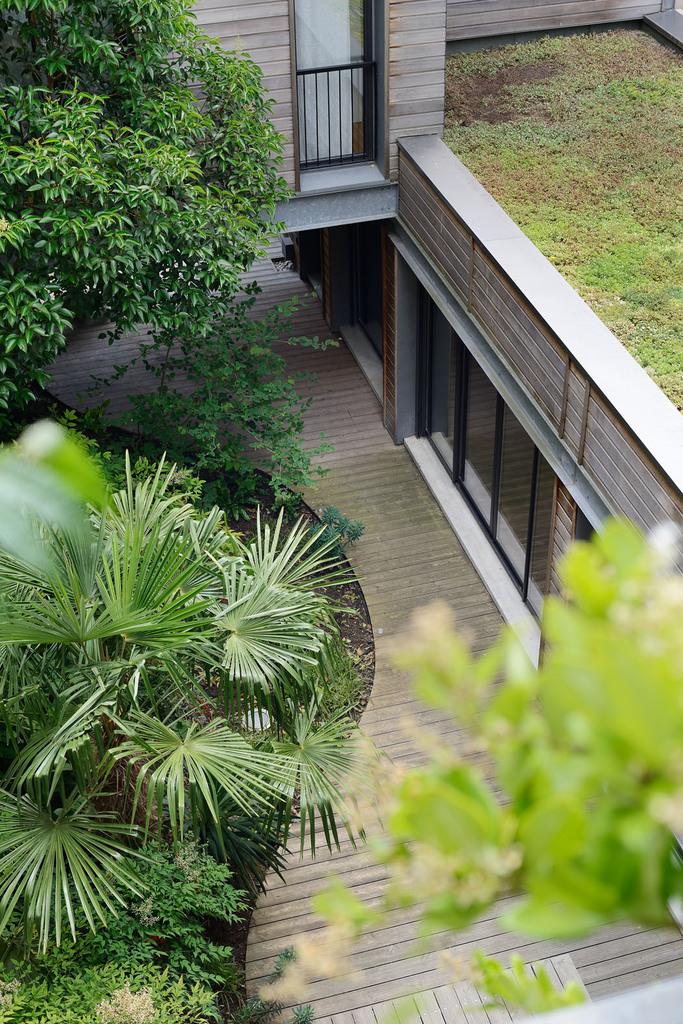 Atelier Alice Tricon / Jardins / Paysages - Passage Soupirs<br>Jardin privé - Paris (75020) - Passage des Soupirs jardin privé vue de la chambre, au second étage Alice Tricon