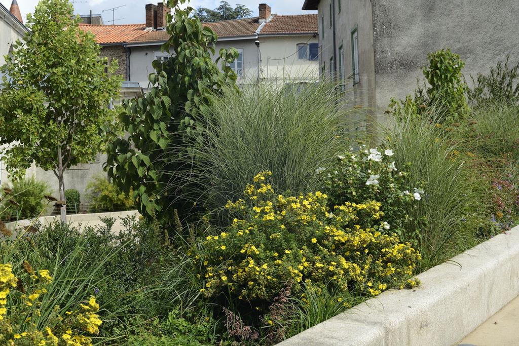 Atelier Alice Tricon / Jardins / Paysages - place de l'Église<br>Aixe-sur-Vienne - Place Armand Fayard, Aixe sur Vienne (87) - Place de l'Eglise Aixe-sur-Vienne la rampe - jardin Alice Tricon