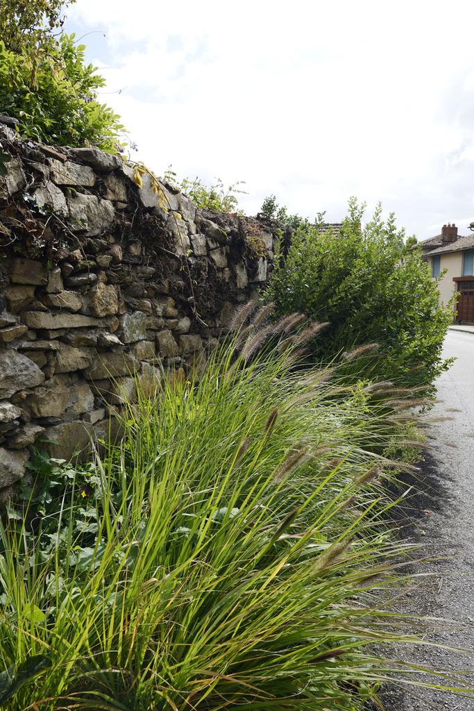 Atelier Alice Tricon / Jardins / Paysages - Séreilhac - Séreilhac (87) - vieux mur et graminées