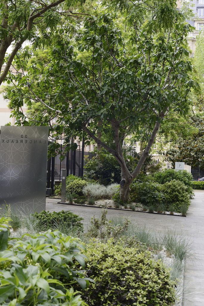 Atelier Alice Tricon / Jardins / Paysages - JARDIN DE SEUIL – CAPITAL 8 - bureaux  PARIS (75) - Entrée Lancereaux Capital 8 Alice Tricon