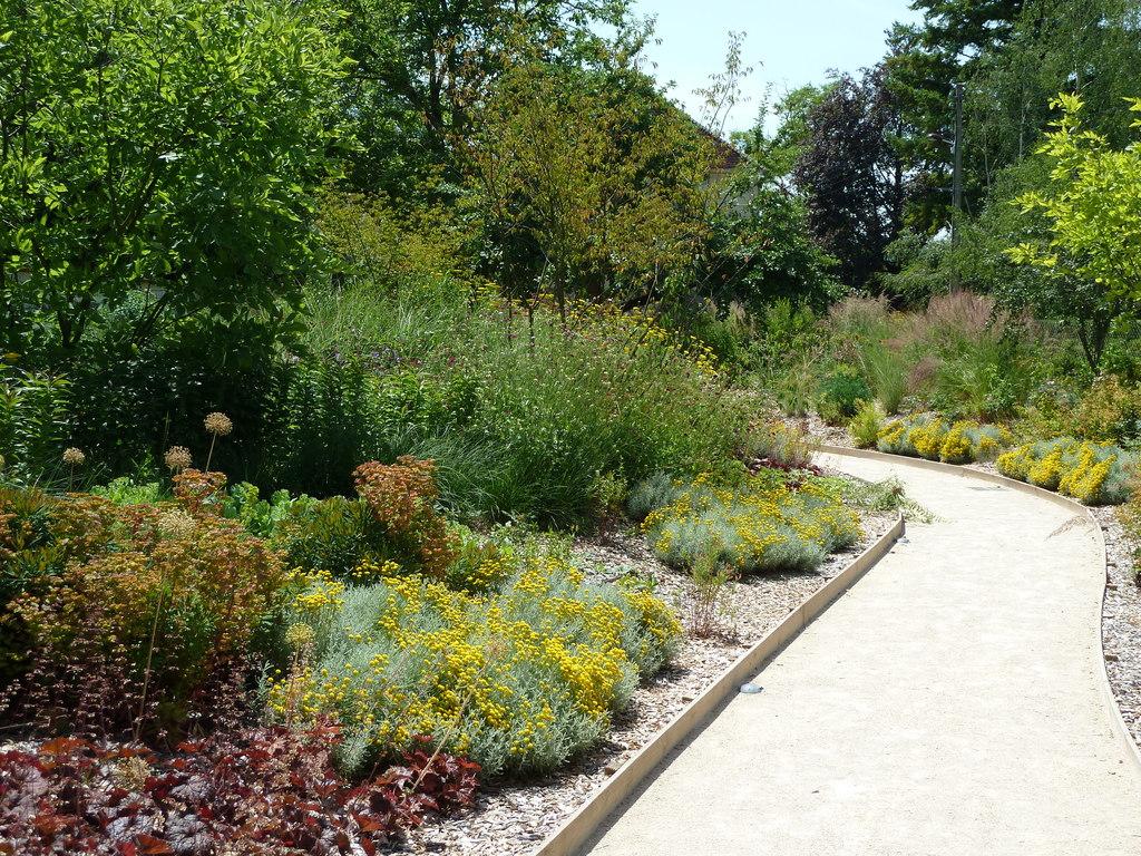 Atelier Alice Tricon / Jardins / Paysages - Renoir - Essoyes (10) - Vue sur projet planté