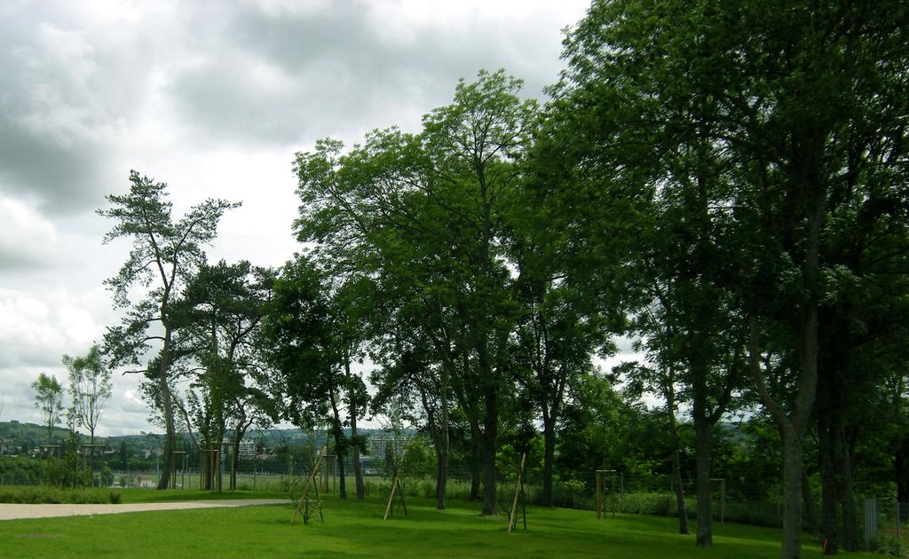 Atelier Alice Tricon / Jardins / Paysages - Vichy - Bellerive-sur-Allier (03) - Plages végétales