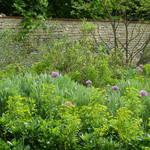 Atelier Alice Tricon / Jardins / Paysages - Renoir