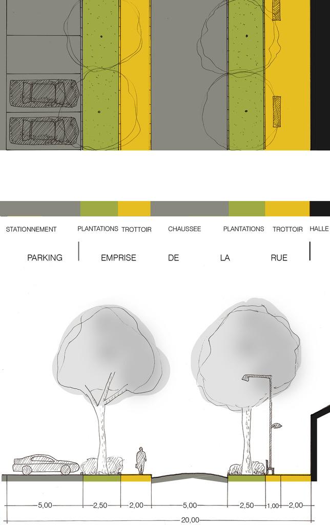Atelier Alice Tricon / Jardins / Paysages - Aixe Étude - Aixe sur Vienne (87) - Champ de Foire profil