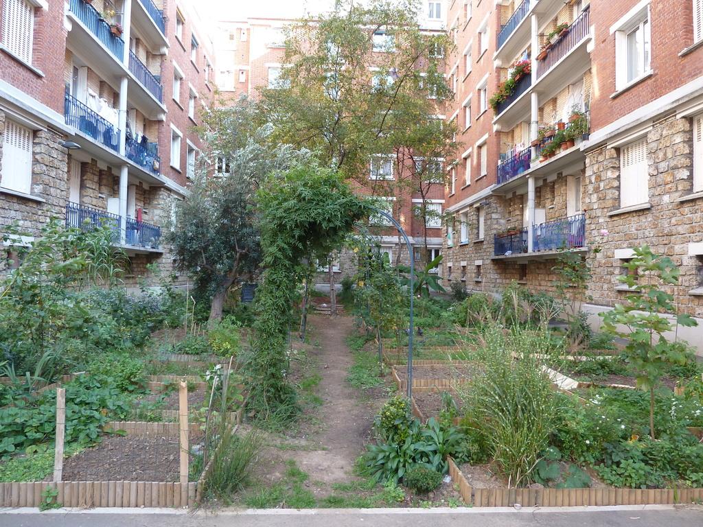Atelier Alice Tricon / Jardins / Paysages - Losserand - Paris (75014)  - Vue sur jardin partagé