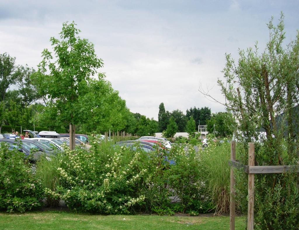 Atelier Alice Tricon / Jardins / Paysages - Vichy - Bellerive-sur-Allier (03) - Massifs parking