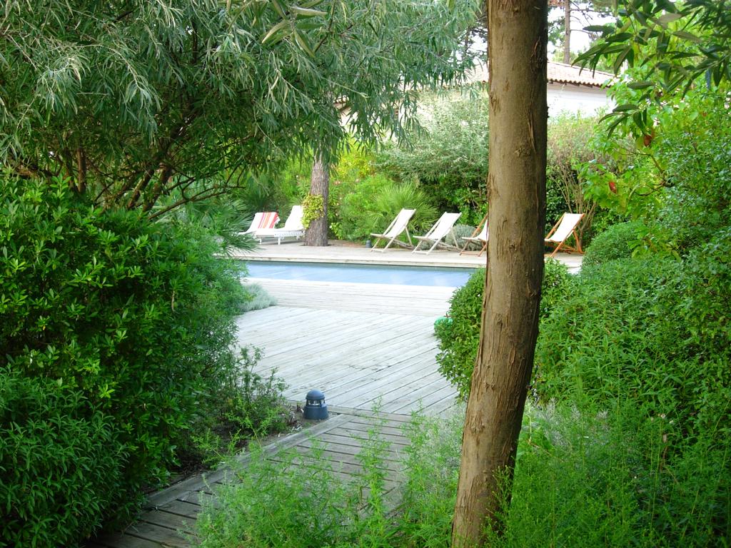 Atelier Alice Tricon / Jardins / Paysages - Cap Ferret <br> Jardin privé - Les Vallons du Ferret (33) - Cap Ferret, espace central de la piscine - Atelier Alice Tricon