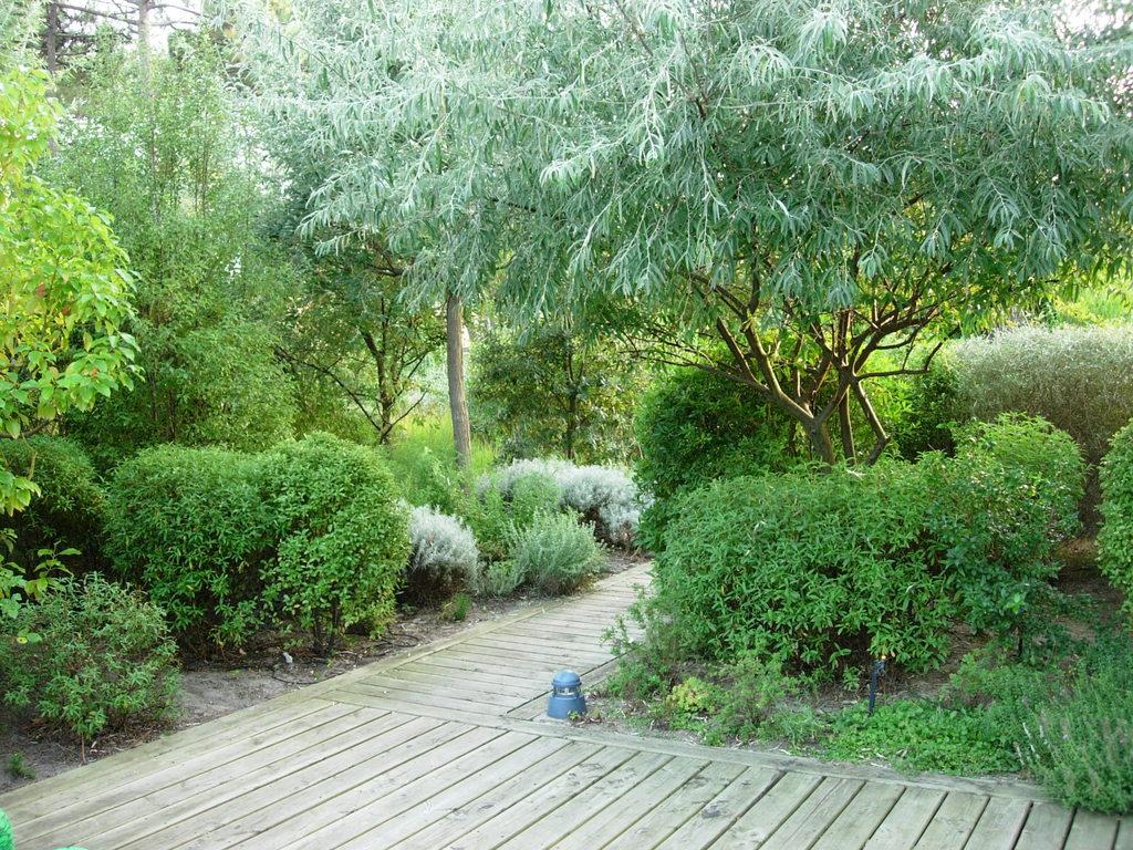 Atelier Alice Tricon / Jardins / Paysages - Cap Ferret <br> Jardin privé - Les Vallons du Ferret (33) - Cap Ferret Platelage piscine Alice Tricon