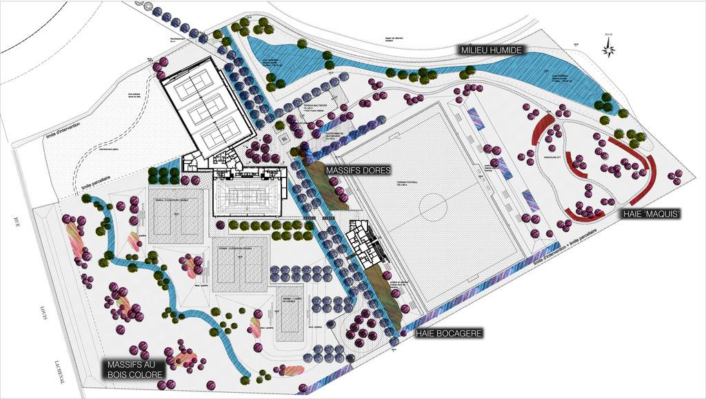 Atelier Alice Tricon / Jardins / Paysages - parc des sports<br>San Sénart - Saint Pierre du Perray (91) - Parc des Sports Saint Pierre du Perray San de Sénart Stratégie végétale Alice Tricon