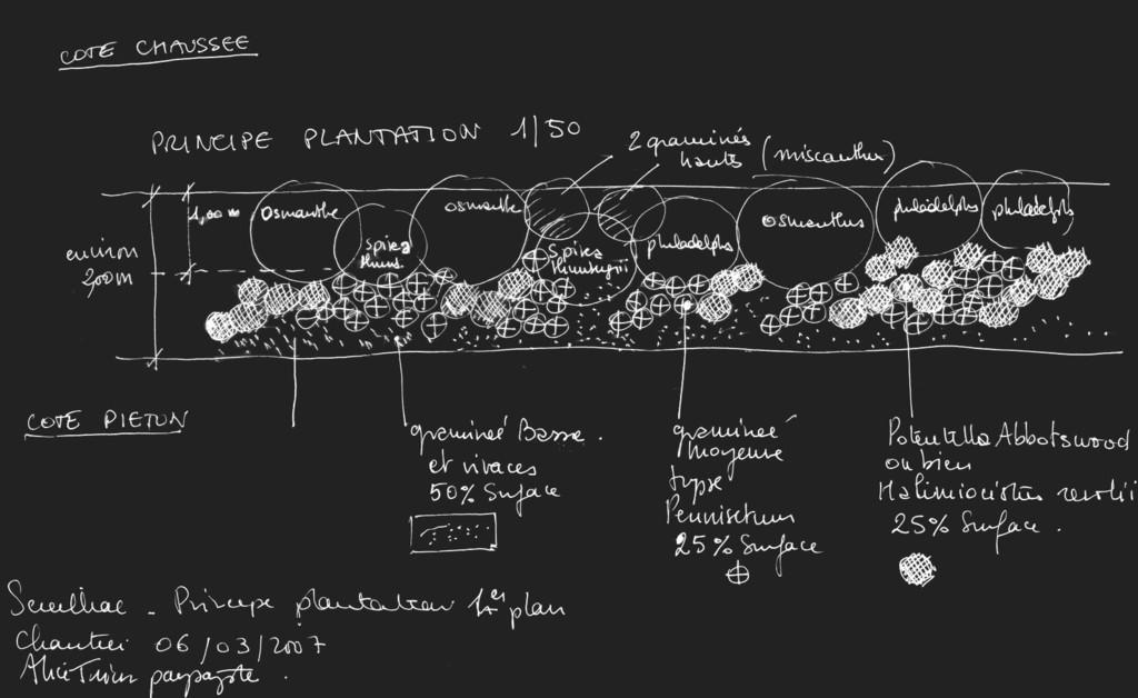 Atelier Alice Tricon / Jardins / Paysages - Séreilhac - Séreilhac (87) - Principe de plantation