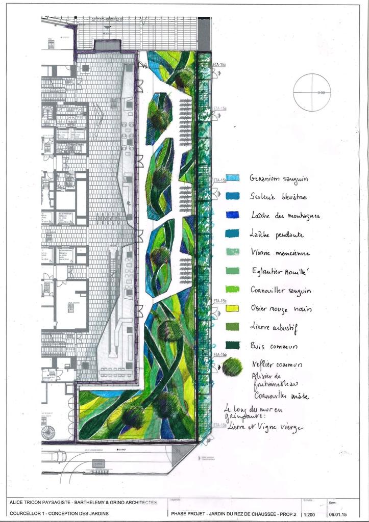 Atelier Alice Tricon / Jardins / Paysages - COURCELLOR1 - Bureaux Levallois Perret (92) -