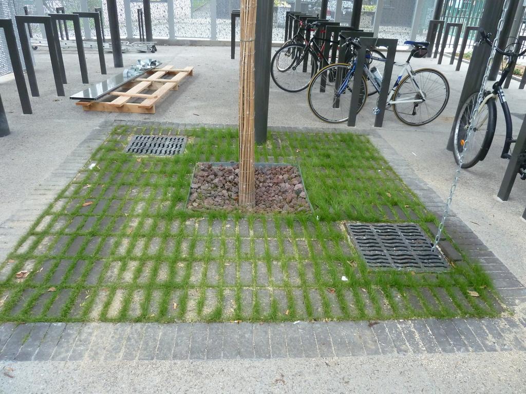 Atelier Alice Tricon / Jardins / Paysages - RESIDENCE ETUDIANTS - Villejuif (94) - fosse d'arbre-parvis d'entrée-résidence étudiants-alice tricon
